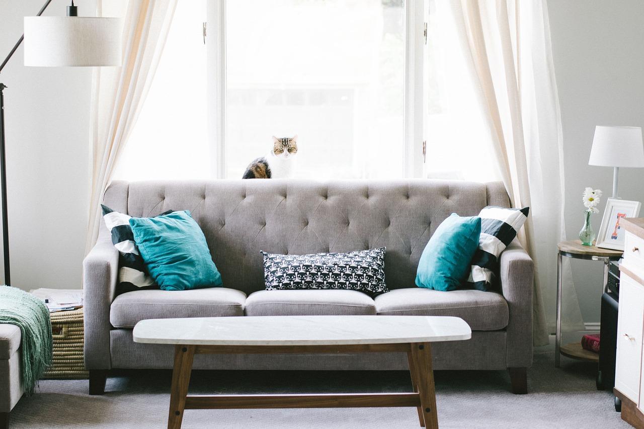 Cambia el tapizado a tu sofá viejo Las 4 Esquinas